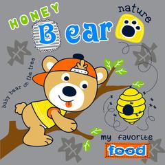 Cute honey bear animal cartoon