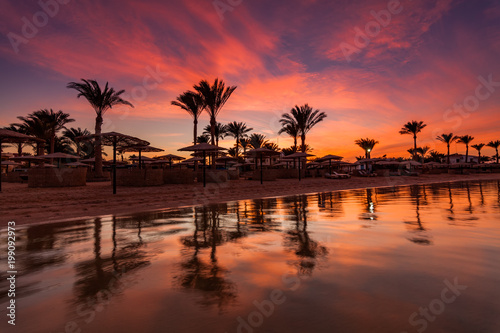 Plexiglas Crimson Beautiful romantic sunset over a sandy beach and palm trees. Egypt. Hurghada