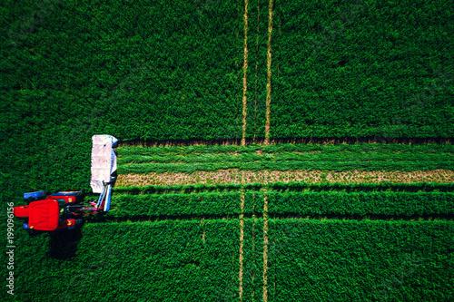 Fotobehang Trekker Agriculture. Tractor mowing green field, aerial drone view