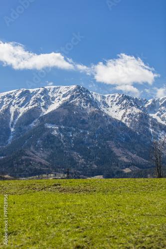 Sielankowy krajobraz w Alpach ze świeżymi zielonymi łąkami i kwitnącymi kwiatami oraz ośnieżonymi wierzchołkami górskimi w tle,