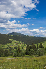 Amazing view of beautiful cloudy summer landscape and village in distance. Tops of mountains and old thick wood growing on hills. Vertical color image.