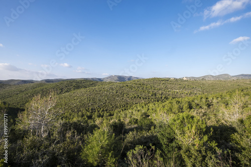 Foto op Canvas Barcelona Natural Park of Garraf