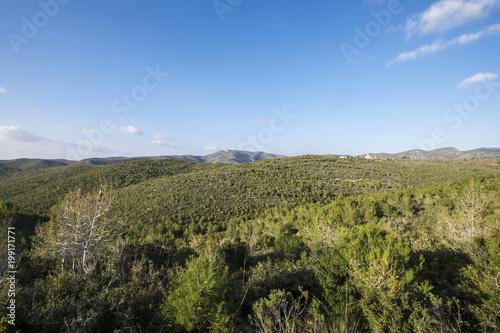 Fotobehang Barcelona Natural Park of Garraf