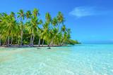 Palm trees on the beach. Travel and tourism concept. Tahaa, Raiatea, French Polynesia. - 199181779