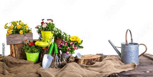 Foto Murales garten set Pflanzen