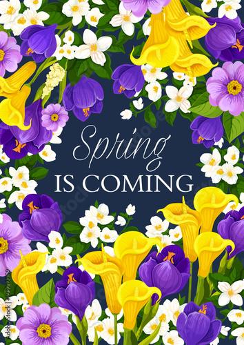 wiosna-sezon-wakacje-kwiaty-wektor-kartke-z-zyczeniami