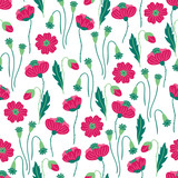 Seamless floral pattern with poppy on white background
