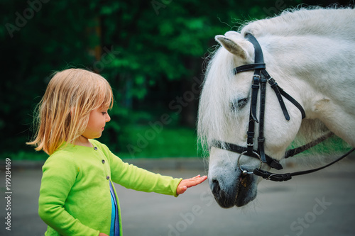 Foto Murales little girl touching big horse in nature