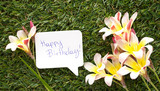 Note in shape of a chat bubble, with words Happy Birthday! and flowers on green grass.
