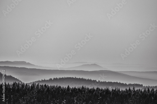 Fotobehang Donkergrijs Thüringer Wald