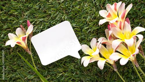 Puste miejsce notatki mowy bąbel na zielonej trawie i kwiatach.