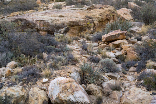 Fotobehang Donkergrijs Red Rock Canyon, Nevada, USA.