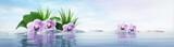 Orchideen mit Steinen im See - sonnige Stimmung - 199328763