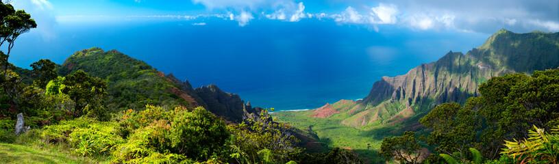 Hawaii Panorama of the Ocean in Kauai © Brian Wedekind