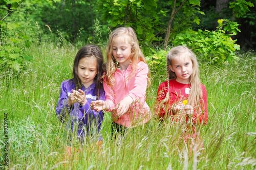 Dzieci bawiące się na letniej łące