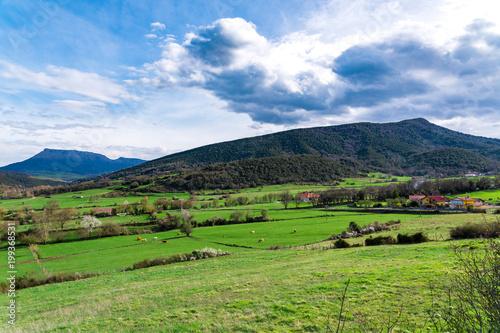 Fotobehang Pistache Typical Basque landscape seen from the mountain, Zalla, Spain