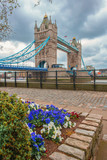 Tower Bridge in London, highlighted by the shades of blue