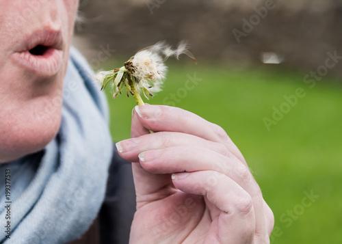 Fotobehang Paardenbloemen A Dandelion Wish
