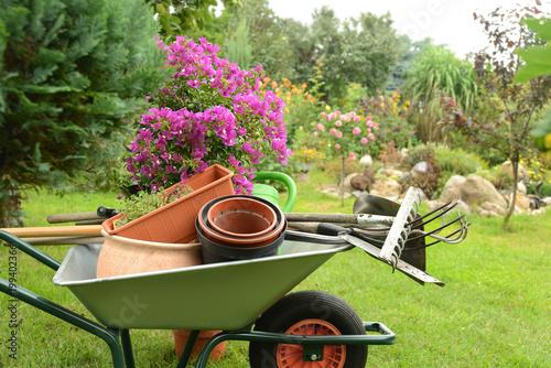 Foto Murales Garten 807