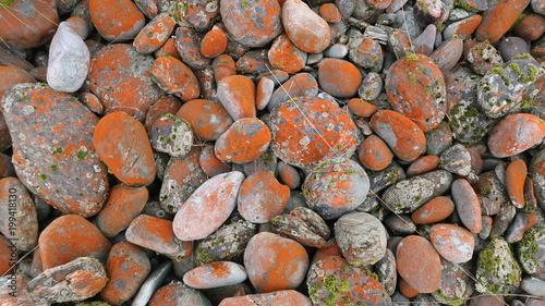 Fotobehang Stenen stones 2