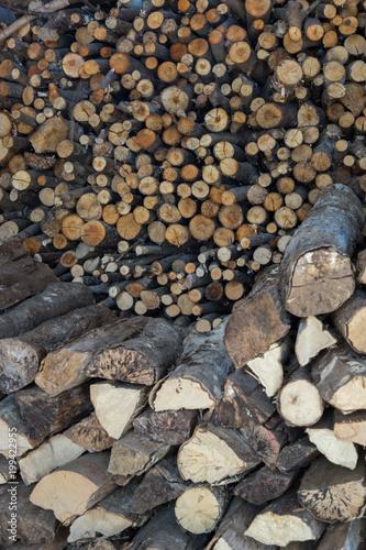 Foto op Aluminium Brandhout textuur bois