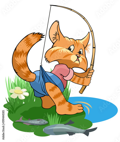 Cute tabby cat catches fish in a pond