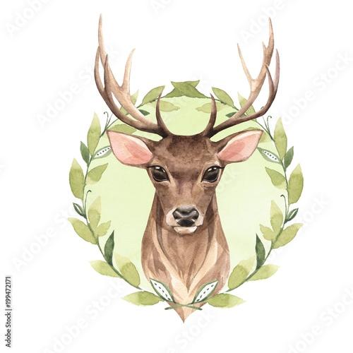 noble-deer-watercolor-illustration