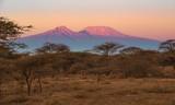Kilimanjaro im Morgenlicht