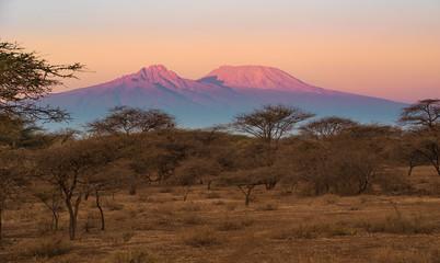 Kilimanjaro im Morgenlicht © Martina Schikore