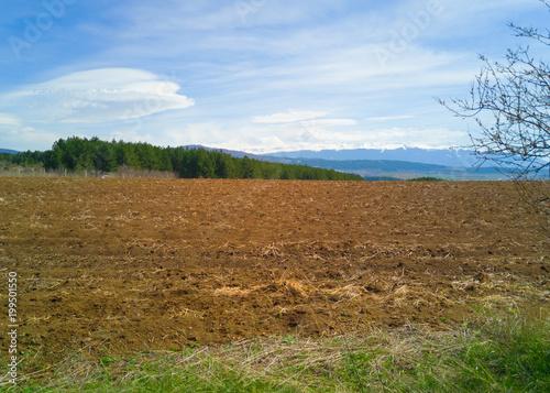 Fotobehang Blauwe hemel Spring Landscape
