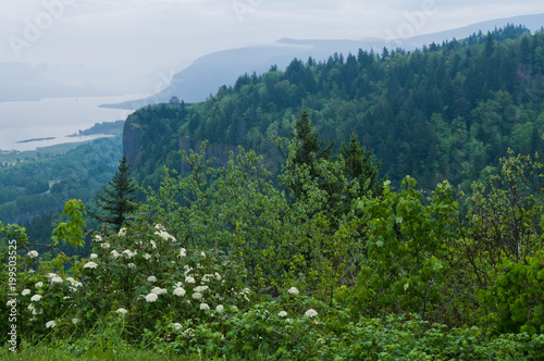 In de dag Ochtendgloren Columbia Gorge