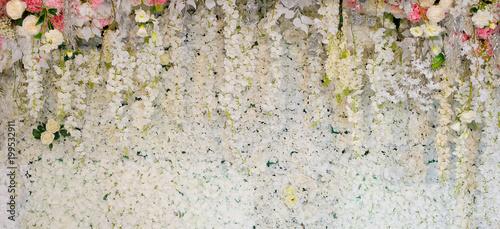 kwiat tło. dekoracja ślubna na tle. Różany wzór. Ścienny kwiat, kolorowy tło, świeża róża