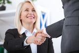 Business handshake. Business handshake and business people concept. Successful Business woman smiling friendly - 199559111