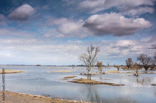 Fotobehang Bleke violet rozlewisko rzeki , wiosenne roztopy, zachmurzone niebo