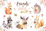 Cute watercolor bohemian baby cartoon hedgehog, squirrel and moose animal for nursary, woodland isolated forest illustration for children. Bunnies animals. - 199592504