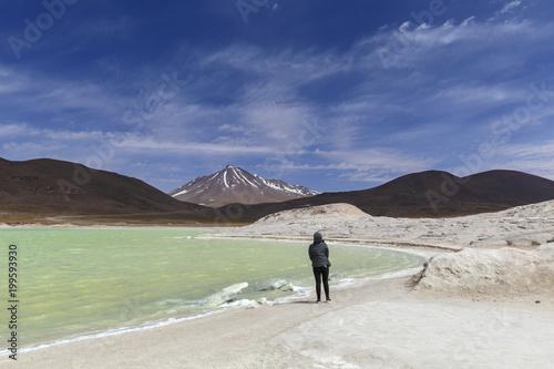 In de dag Olijf Red stones (Piedras Rojas), Aguascalientes Saline, Atacama, Chile
