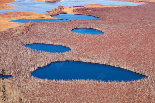 Aluminium Lente Spring flooding of lakes in forest, top view
