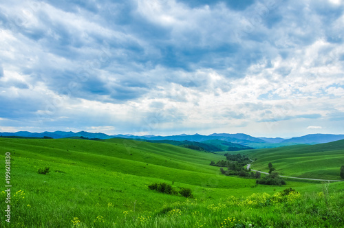 Fotobehang Groene Green meadow and forest against the mountains. Altai, Russia.