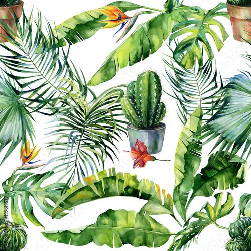 Bezszwowa akwareli ilustracja tropikalni liście, zwarta dżungla i kaktusy sztuka ,. Deseniowy z zwrotnika lata motywem i kaktusową ilustracją może używać jako druk, domu lub ogródu dekoracja
