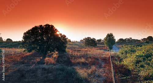 Fotobehang Baksteen sunrise in eastern plain of Corsica island