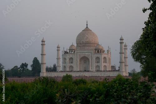 Foto Murales Taj Mahal in Agra, India