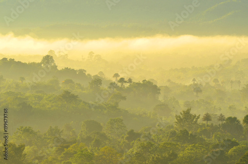 Foto op Canvas Beige Beautiful Tropical Mountain mist in Rain Forest with Fog of Sumatra, Aceh Besar, Aceh province-Indonesia