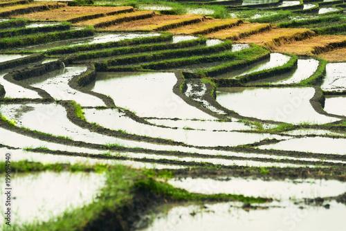 Aluminium Guilin Rice terraces landscape