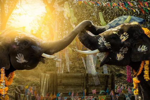 Fotobehang Graffiti Songkran Festival Elephants of priceless Thailand
