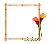 Realistic red calla lily, bamboo frame. The symbol of Attraction and Passion.