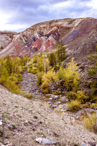 Foto Murales Colorful red rocks with yellow trees. Autumn in the Altai mountains.