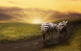 Zebras on the way - 199767752