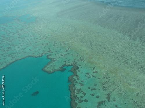 la garnde barrière de corail