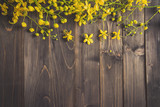Yellow flower on wooden background with space with vintage toned. - 199803710