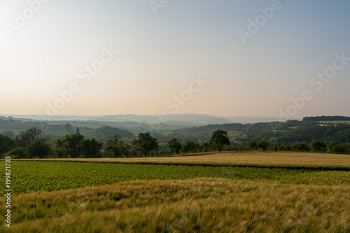 Fotobehang Beige Hüglelandschaft mit Bäumen